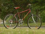 Filmpje over de fiets