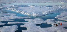 Disso Voce Sabia?: Temperaturas e degelo aumentam no Ártico à medida que planeta esquenta
