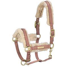 Equestrian Supplies: The Horse Pet Grooming Set - Horse informations Equestrian Boots, Equestrian Outfits, Equestrian Style, Equestrian Problems, Horse Halters, Horse Saddles, Western Saddles, Dressage, Eskadron Heritage