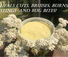Healing Herbs, Medicinal Herbs, Natural Healing, Natural Health Remedies, Herbal Remedies, Herbal Tinctures, Herbalism, Natural Medicine, Herbal Medicine