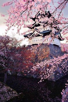Hirosaki Castle in Spring. Japan - (By Glenn Waters) (Travel This World) , Hirosaki Fort in Spring. Japan - (By Glenn Waters) (Journey This World) Hirosaki Fort in Spring, Japan. Beautiful World, Beautiful Places, Simply Beautiful, Places Around The World, Around The Worlds, Places To Travel, Places To Visit, Travel Destinations, Monte Fuji
