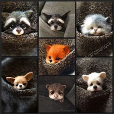 wild and pets comparison of adjectives test, and pets r family took, funny pets and vine compilations clean and clear, what kind of small animals does petsmart sell. Cute Animal Drawings, Cute Animal Pictures, Cute Drawings, Needle Felted Animals, Felt Animals, Animals And Pets, Small Animals, Cute Little Animals, Cute Funny Animals