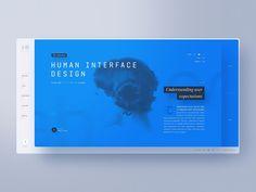 Design : Ben Schade