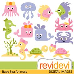 Sea animals cliparts. Jellyfish, sea horse, fish, crap, turtle, dolphin. These   digital images are  great for any craft and creative  projects