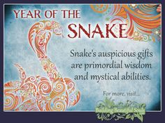 Chinese Zodiac Snake & Year of the Snake 1280x960