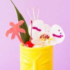 Make this limited ingredient summer cocktail with pineapple juice and a couple other ingredients. It's the perfect summer cocktail and tastes delicious. Summer Cocktails, Cocktail Drinks, Cocktail Recipes, Sunrise Cocktail, Ice Cream Mix, Homemade Modern, Pineapple Rum, Coconut Ice Cream, Toasted Coconut