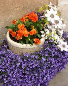 A jardinagem em vasos possiblita cultivar várias plantas, colocadas exatamente onde você quer que fiquem.