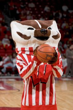 Badger Basketball oh yeah baby:) I Love Basketball, Basketball Rules, College Basketball, Basketball Birthday, Wisconsin Badgers Football, Badger Sports, University Of Wisconsin, Bucky, Badger Images