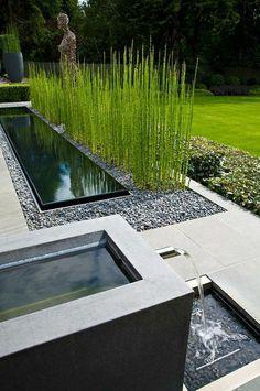 jardin paysager, herbe haute et piscine rectangulaire