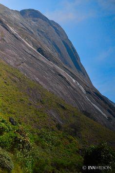 Eravikulam National Park, Kerala, India