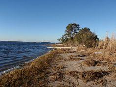 Keg Island, Wilmington, NC