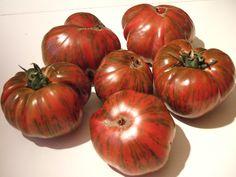 chocolate tomato - Google Search