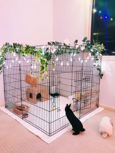 New Pet Rabbit Indoor Bunny Cages Ideas - neue haustier-kaninchen-innenhäschen-käfig-ideen - - idées de cages à lapin d'intérieur pour animaux de compagnie - nuevas ideas de jaulas para conejos de interior para mascotas Diy Bunny Cage, Bunny Cages, Dog Cages, Rabbit Cage Diy, Cages For Rabbits, Animal Room, Pet Bunny Rabbits, Pet Rabbit, Rabbit Pen