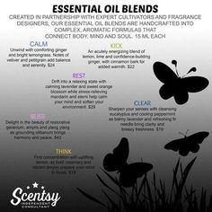 Essential Oil Blends expertly targeted to uplift, comfort, energize, quiet your mind, enhance clarity, restore harmony &/or encourage sound sleep. Add a few drops to water as directed for your elegant Scentsy Diffuser. (Prices lower in U.S.!)  Own Your Mood!  Visit scentsan.scentsy.us