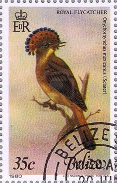 Royal Flycatcher on Belize stamp.