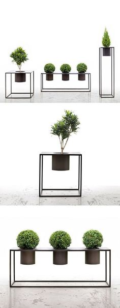 ❤️ these bold planters.  #houseplants