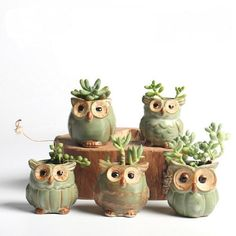 5pcs/lot Creative Green Glaze Ceramic Mini Owl Planter