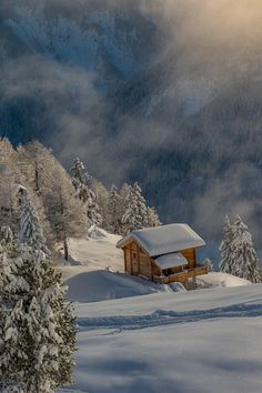 Alps ~ By Florin Biscu  Wouldn't this just be a great place to get away from it all!