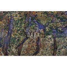 """L'opera appartiene alla collezione """"Fotocreature Dig-out"""". In """"Waterscape"""" il fotografo Carlo Delli omaggia il maestro Matisse e il suo capolavoro la """"Danza"""". L'immagine non descrive un fatto, ma attraverso la composizione, la luce e i colori esprime il continuo rinnovarsi, l'eterno movimento della vita. Il girotondo dei nudi matissiani è sostituito da filamenti di colore, che dal viola acceso degradano a un cupo marrone."""