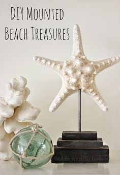 DIY wood stands for your collected sea treasures.