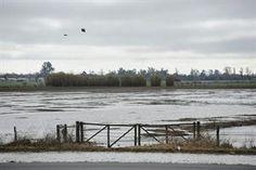 Inundaciones: el campo perdió $ 1000 millones - 19.08.2015 - lanacion.com