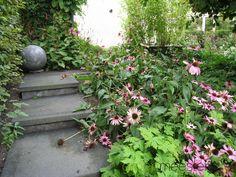 Trap element met strakke tegels #Modern #Tuinontwerp #Tuin #Modern #Garden Trap, Plants, Plant, Planets