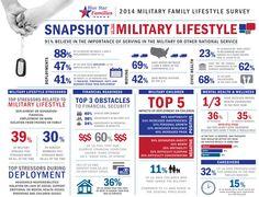 2014 Blue Star Families Military Family Lifestyle Survey