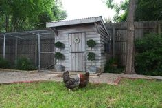 converted playhouse turned chicken coop - good reminders about paint!