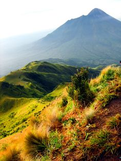 Merbabu route with the background of Mount Merapi, a view from the top Merbabu