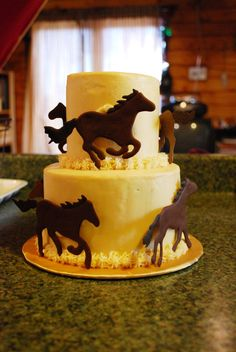 Horse Cake I made this horse cake for a meeting of my local University Equestrian Network. I put it under birthday cakes because I would. Cowboy Birthday Cakes, Cowgirl Cakes, Western Cakes, Horse Birthday Parties, Adult Birthday Cakes, Birthday Ideas, College Graduation Cakes, Graham Cake, Farm Cake