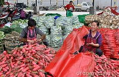 Pengzhou, China: Women Bagging Radishes