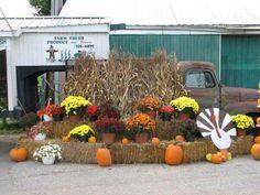 Grown in BaltCo: Farmer Tom's Farm Fresh