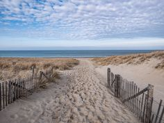 When is the Best Time to Visit Cape Cod?