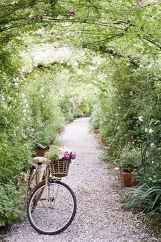 French Rose Arbor and Bicycle | Stefano Scatà | http://heyweddinglady.com/boutique-de-fleurs-french-flower-shop-wedding-inspiration-blue-purple/