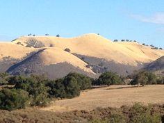 The mountain across the road from Rancho La Zaca, via FrancesSchultz.com