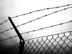 prison fence - Google Search