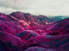 richard mosse nowhere to run, http://www.richardmosse.com/photography.php?pid=1=19
