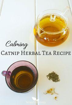 Calming Catnip Herba