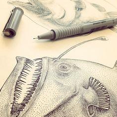 fish illustration Sea Drawing, Stippling Art, Sea Life Art, Angler Fish, Deep Sea Fishing, Nature Illustration, Fish Design, Fish Art, Illustrations