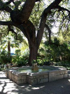 Texas Life: The Alamo Gardens
