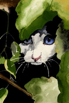 "Cat Magik - by Kelly Chester - Print available for purchase.    **** Hunting down through hundreds of watercolors to share here on the board....  ""Learn Watercolor"" ..... every now and then I come to one and go.......  ""Ahhhhh LOOK AT THAT PAINTING"" !!!!!!!!!!!!   THIS is ONE of those Ahhhhhhhhhhhhhhhhhh moments.  ;)   I adore this peaking kitty. !!!"