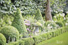 Lush Backyard Topiary Landscape