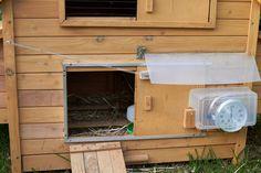 Another automatic chicken coop door opener.