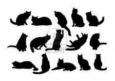 Image detail for -Fifteen Black Cat's Silhouettes On A White Background. Royalty Free ...