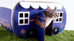 Make your own dog and cat furniture, like a DIY cat house and a DIY dog house, out of a Chewy box after receiving your pet supplies delivery, plus more box craft ideas!