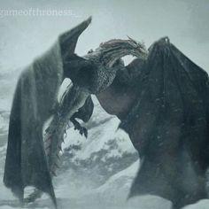 Drogon maybe