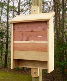 Bird House Kits Make Great Bird Houses Build A Bat House, Bat House Plans, Bird House Kits, Building A House, Bat Box Plans, Building Ideas, Woodworking Plans, Woodworking Projects, Woodworking Basics