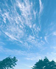 파-랗다 . . #하늘 #파란하늘 #여름 #구름 #sky #bluesky #summer