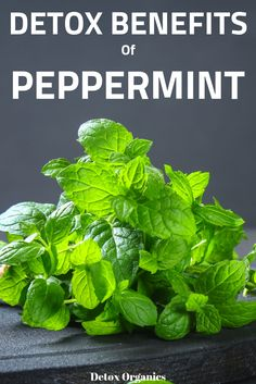How to detox the right way. Health benefits of peppermint for detox. Natural Body Detox, Natural Cleanse, Herbal Remedies, Health Remedies, Natural Remedies, Superfoods, Detoxification Diet, Body Detox Cleanse, Cleanse Diet