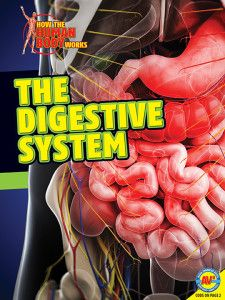 The Digestive System is part of the How the Human Body Works series. Published by Weigl Publishers, August 2014.
